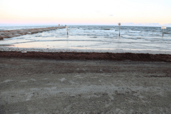 Texas Coast Dodges Seaweed This Summer - Texas A&M Today