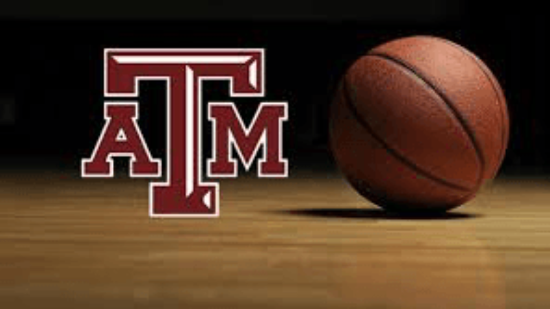 tamu basketball