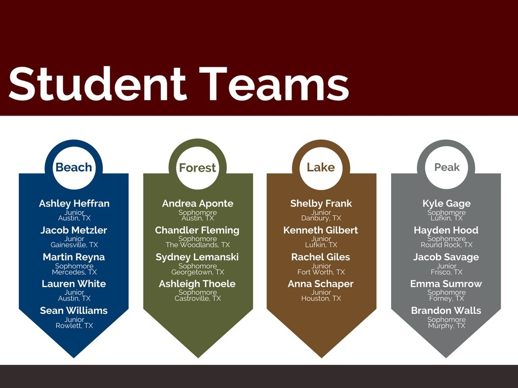 Graphic of student teams for architecture project