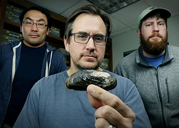A&M AgriLife Researchers In Dallas Study Texas' First Federally Endangered Mussel Species
