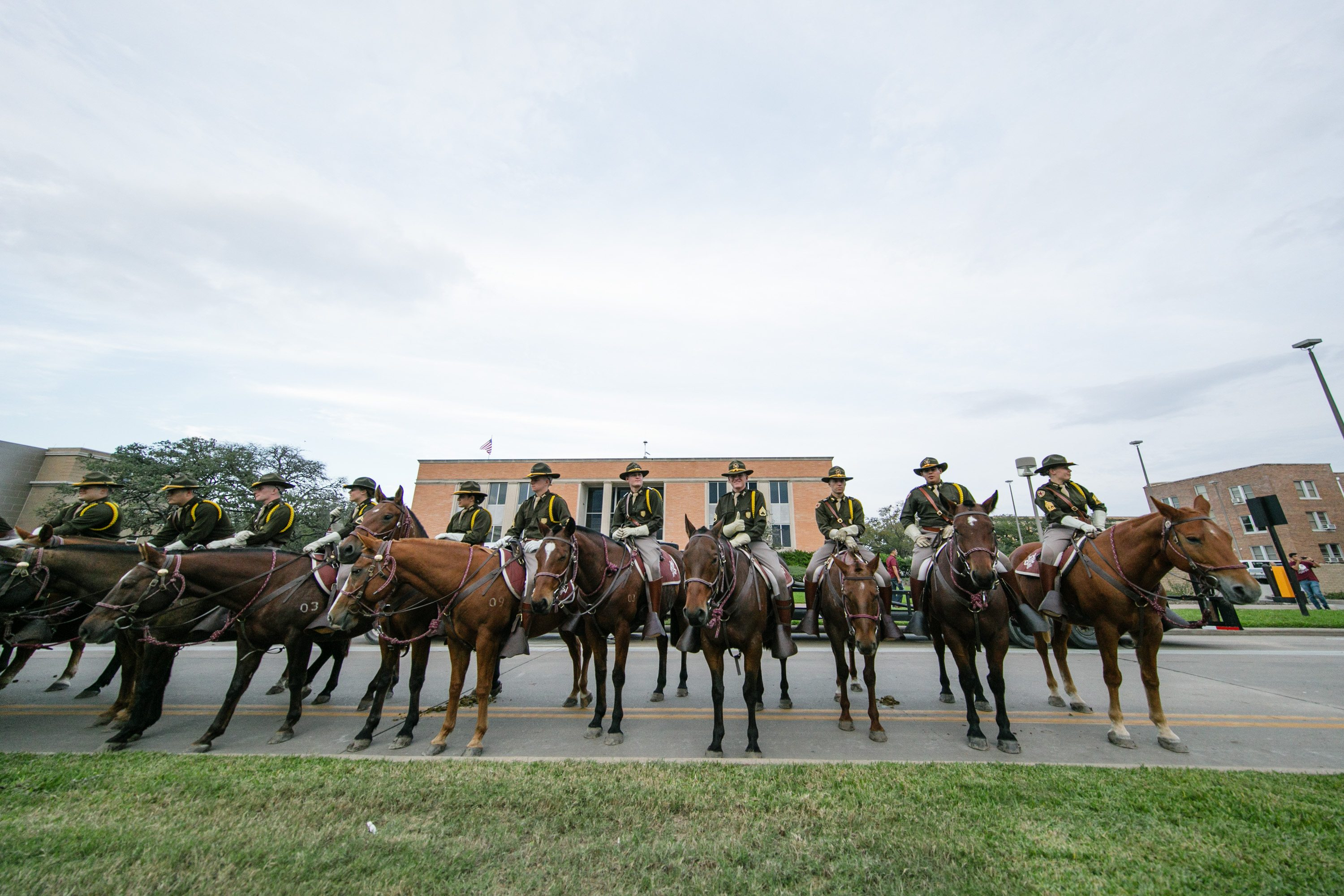 Parsons Mounted Cavalry awaits March In prior to the Texas A&M vs. Ole Miss football game in 2016. (Gabriel Chmielewski/Texas A&M Marketing & Communications)