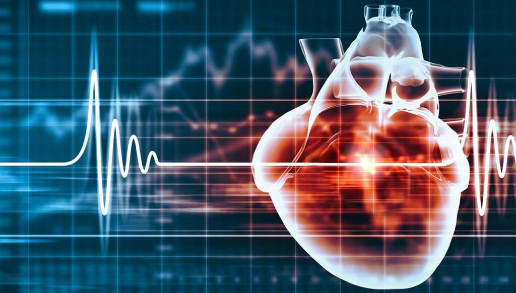 heart research